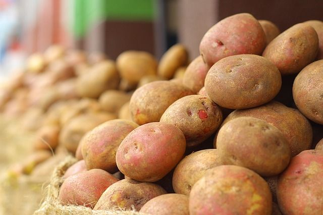 Eladó krumpli